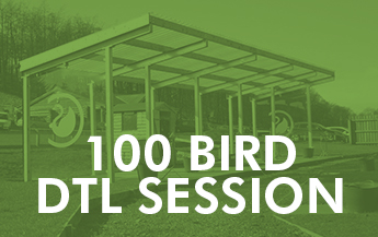 100 Bird DTL Session
