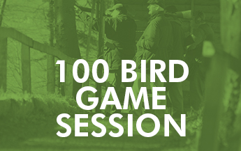 100 Bird Game Session