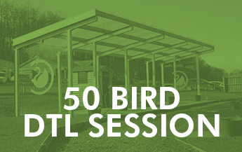 50 Bird DTL Session