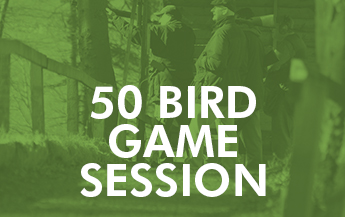 50 Bird Game Session